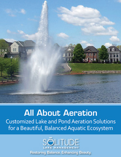 All About Aeration