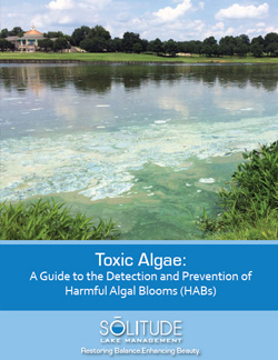Toxic Algae Detection