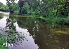 Golf_course_pond_Haymarket_VA_3.25acres_AFTER_algae_treatment-2