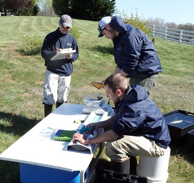 Fisheries Management Strategies: Seeking Professional Advice