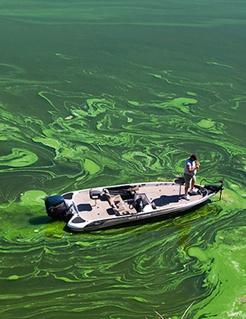 toxic-algae-webinar-recording-enews