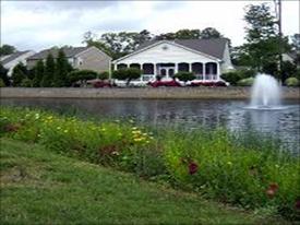 vegetative-pond-buffer.jpg