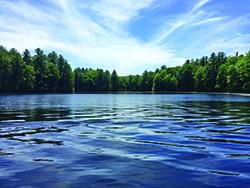 water-quality-aquatics-in-brief-e.jpg