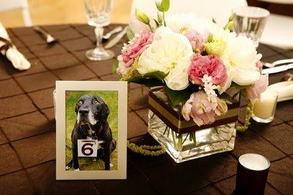 dog photos as wedding decor