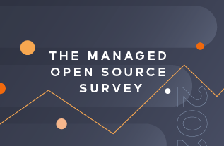 The 2020 Tidelift managed open source survey