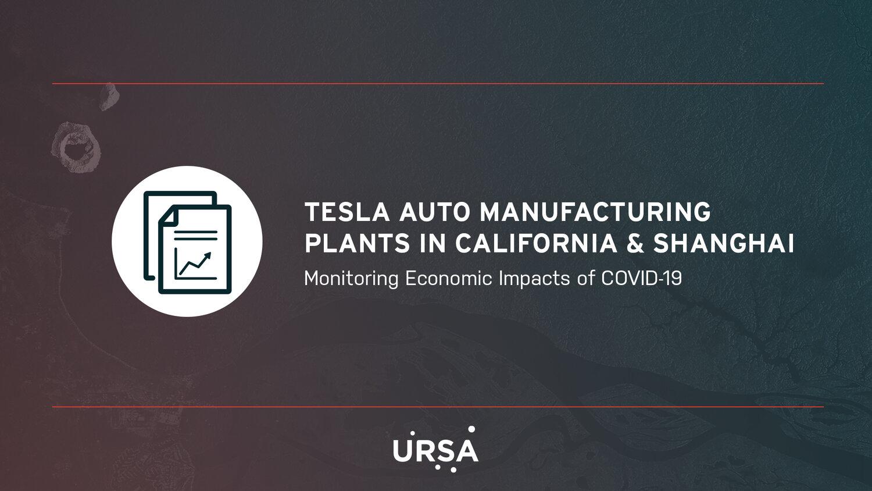 Tesla Auto Manufacturing Plants in California & Shanghai.jpg