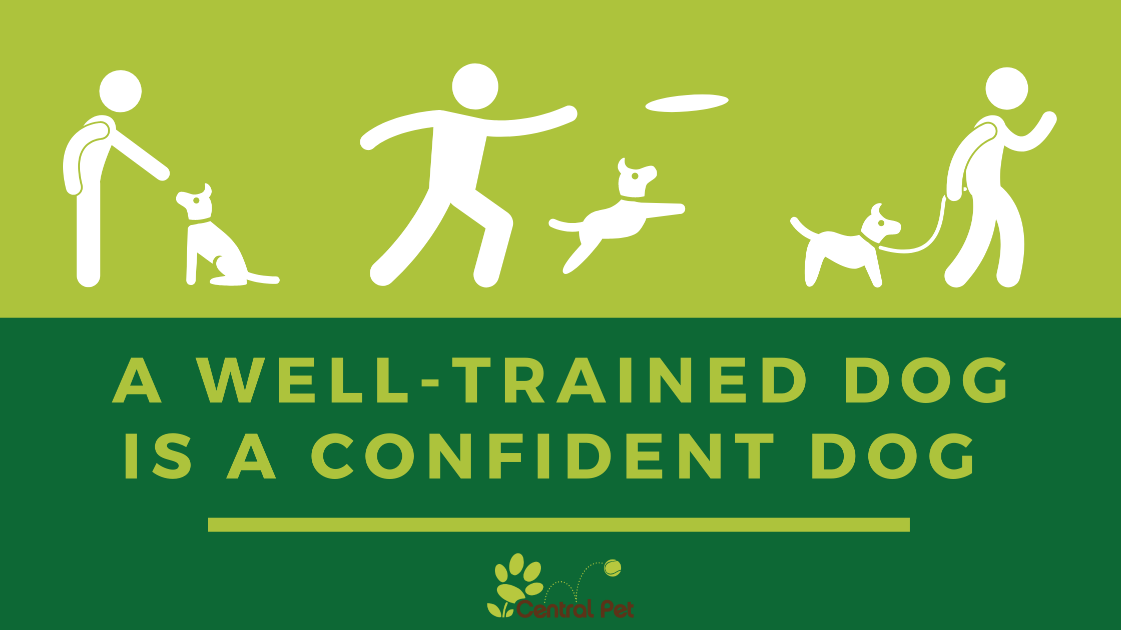 A Well-Trained Dog is a Confident Dog