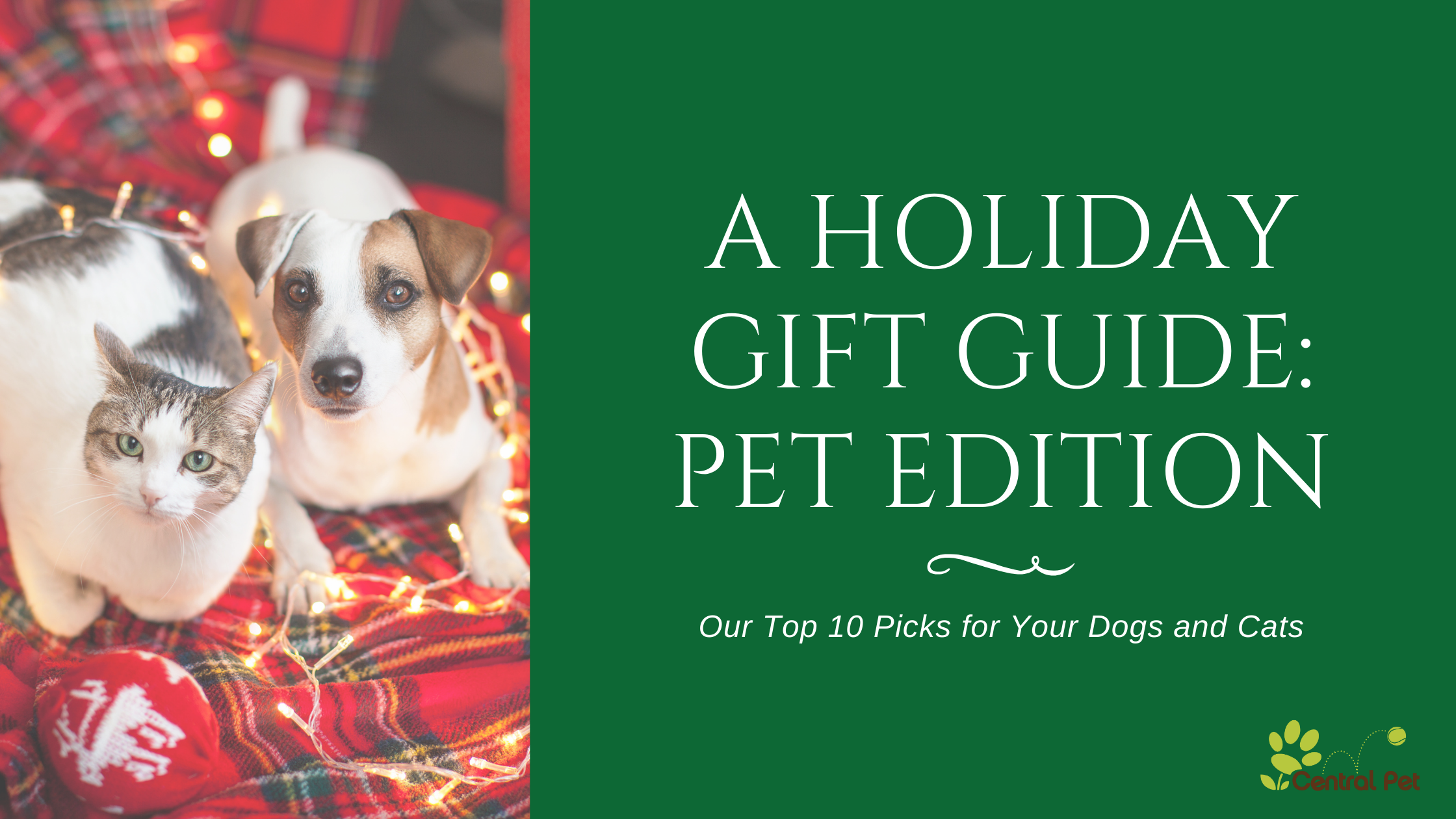 A Holiday Gift Guide: Pet Edition