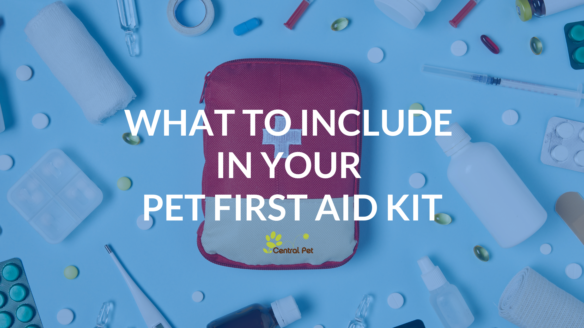 What to Include In Your Pet First Aid Kit