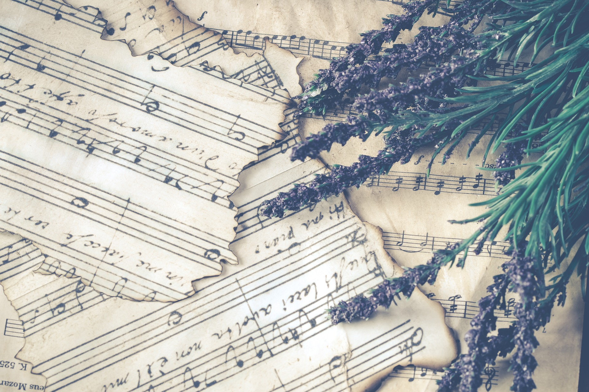 music sheets and lavender