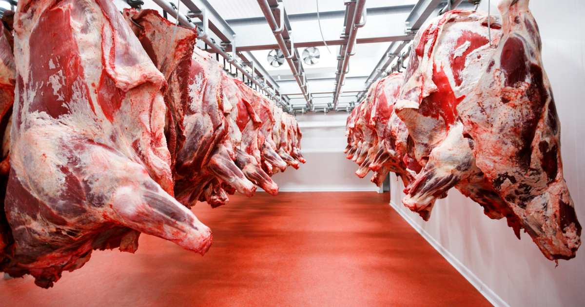 El comercio de la carne en Argentina: Calidad superior
