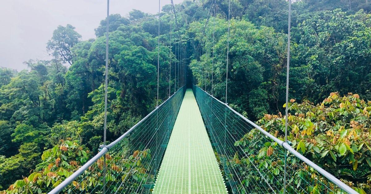 """Wall Street Journal: """"Costa Rica, a Wild Homeschooling Alternative"""""""