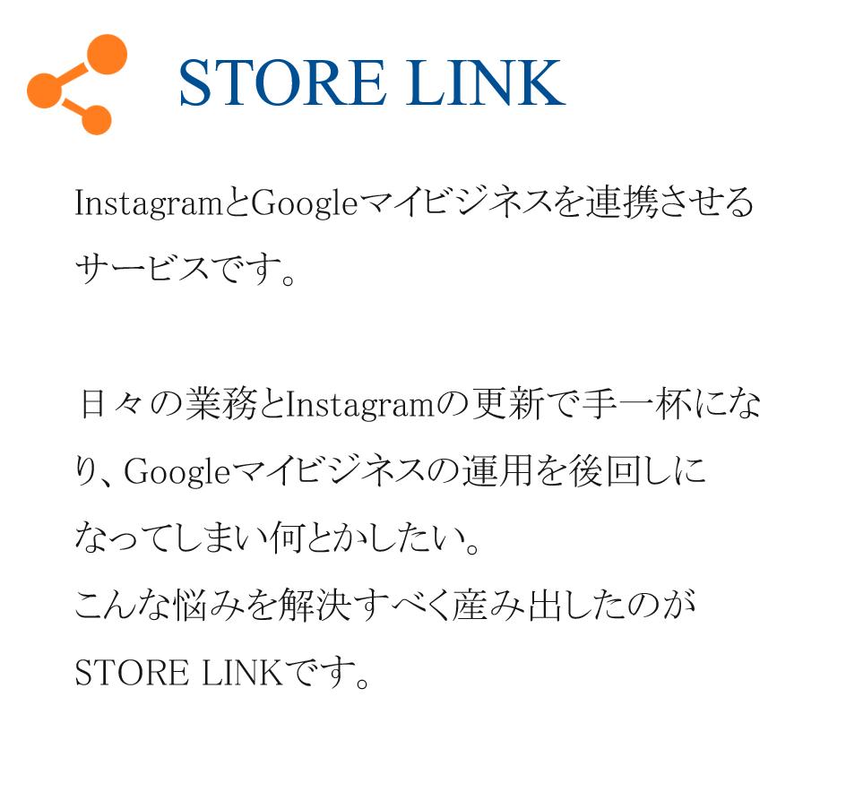 storelink-1