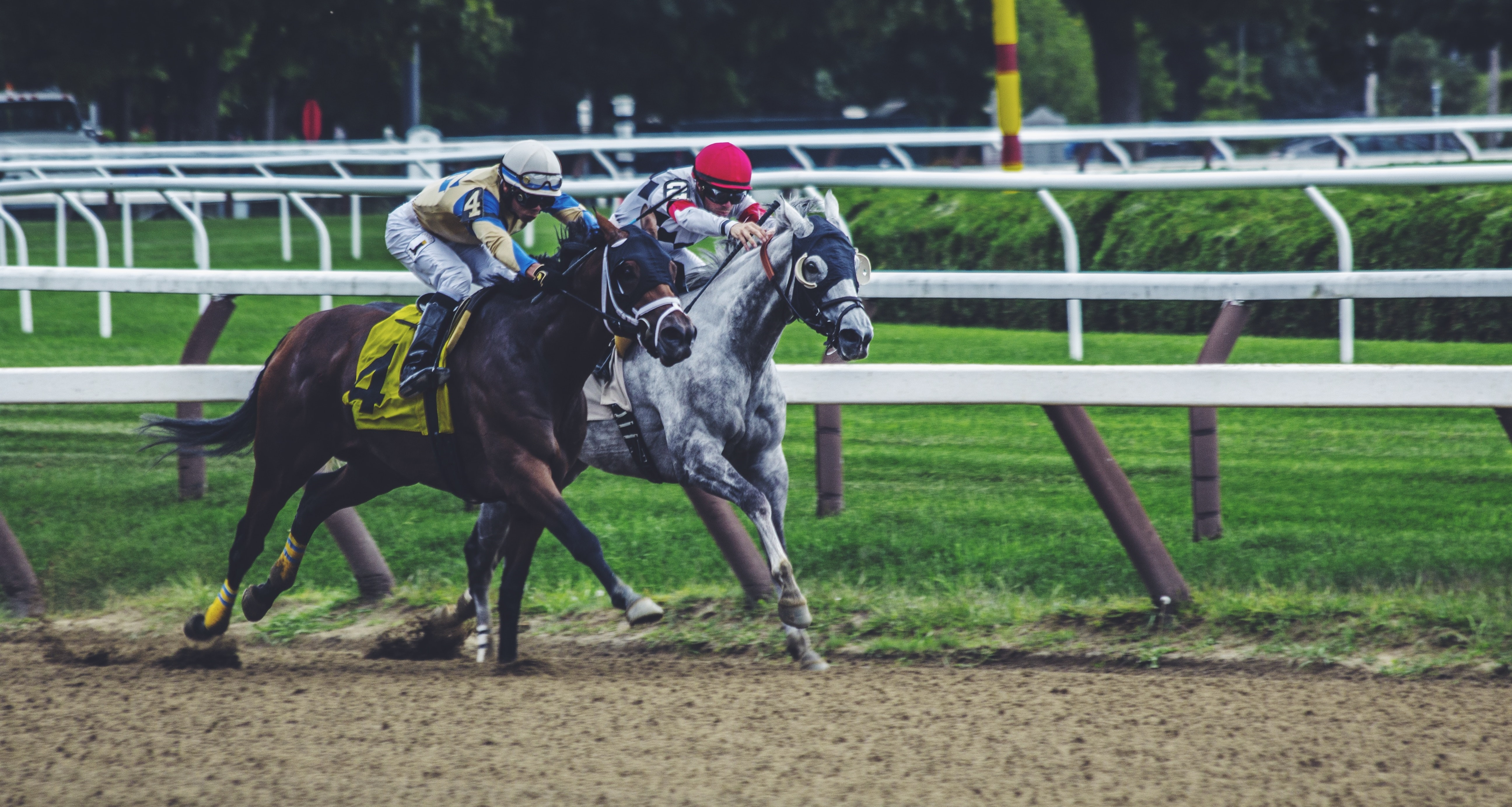 Horse racing is a long-time favorite of sports bettors