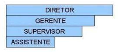 exemplo-organograma-em-barras