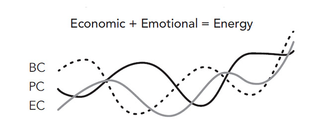 Economic Emotional Drivers